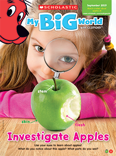 Investigate Apples My Big World magazine